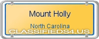 Mount Holly board